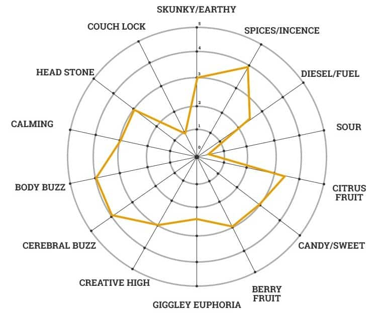 MSNL weed strain character chart