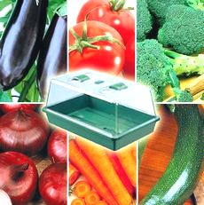 Herb and Vegetable Seeds