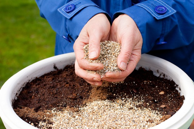 How to sow seeds direct into pots - covering the seed with vermiculite