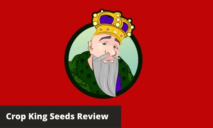 crop king seeds review