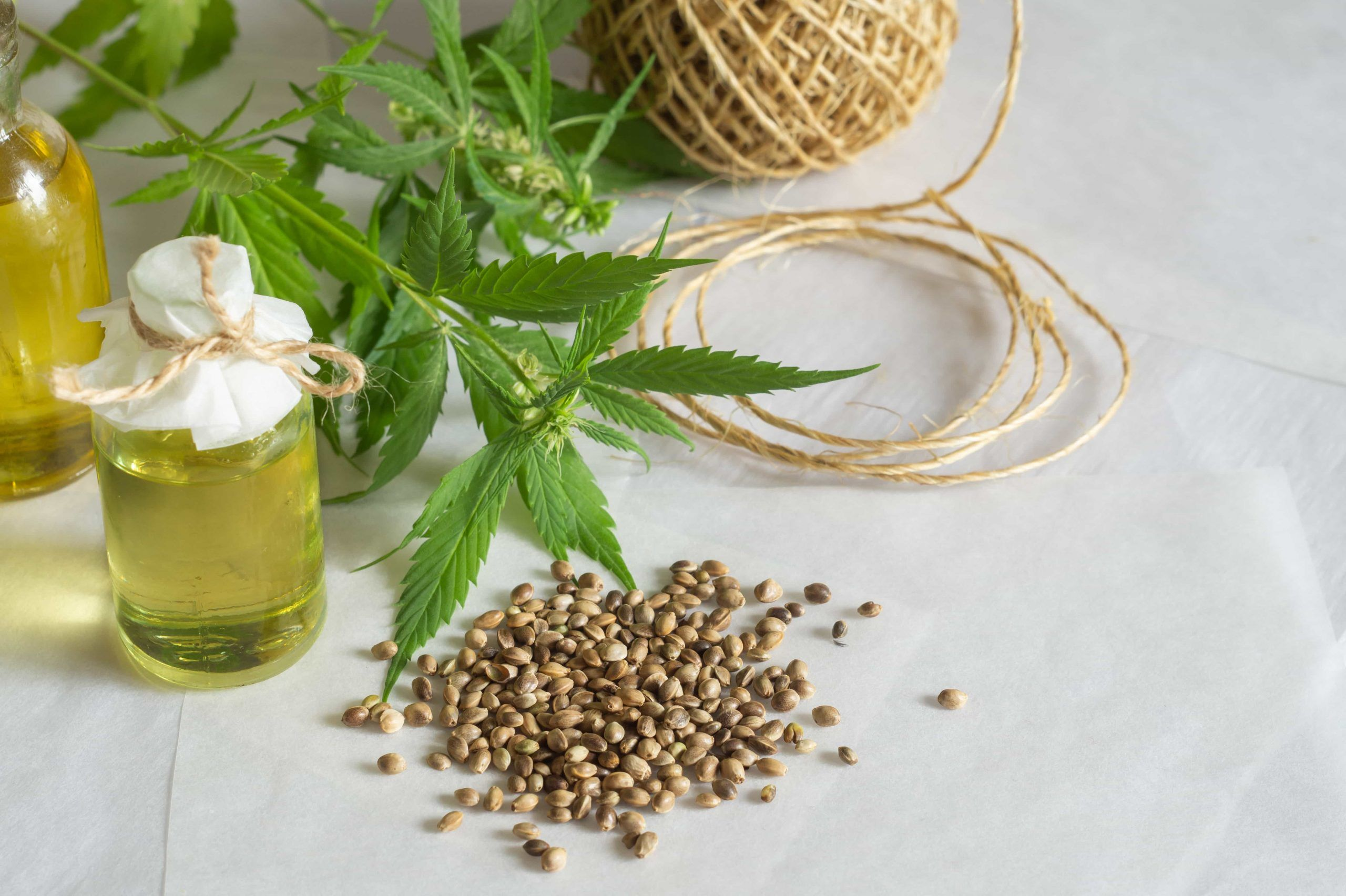 hemp seeds and hemp seed oil