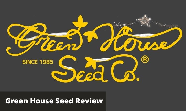 green house seed review